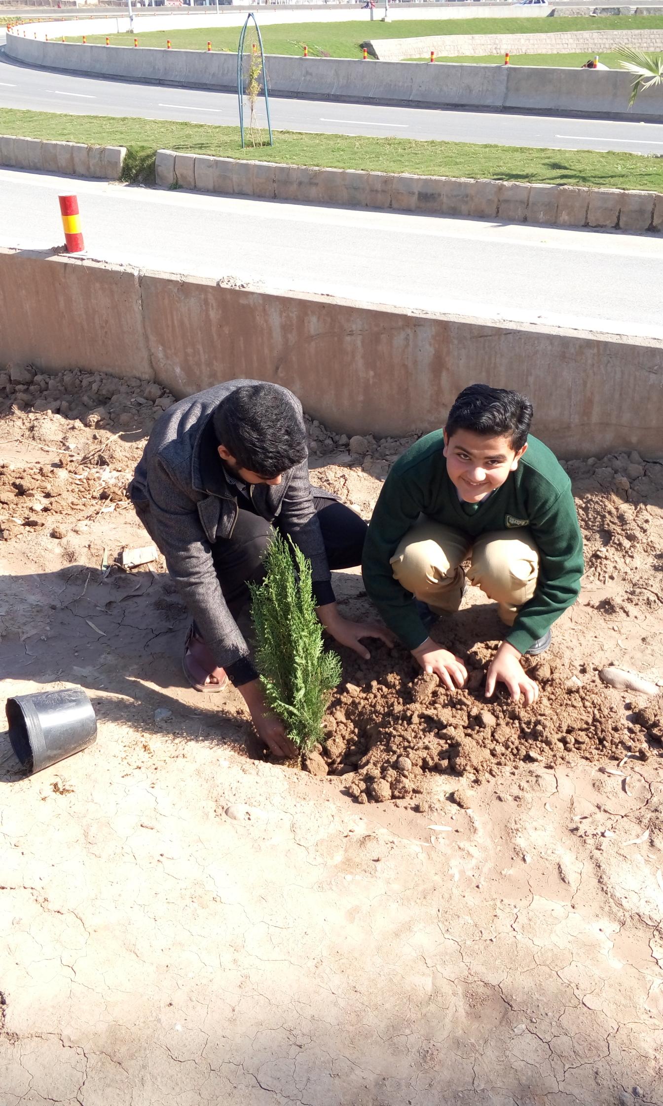 Plantation by Syed Hamad Raza Taqi of Class 7