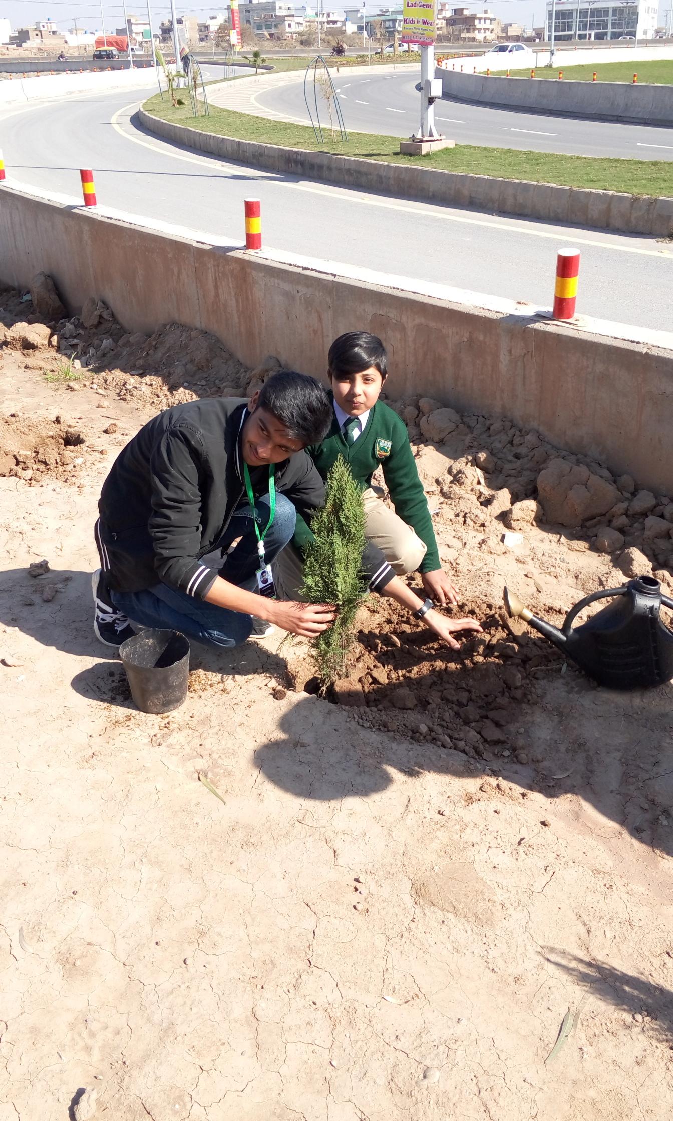 Plantation by M. Awais bin Sajid of Class 7
