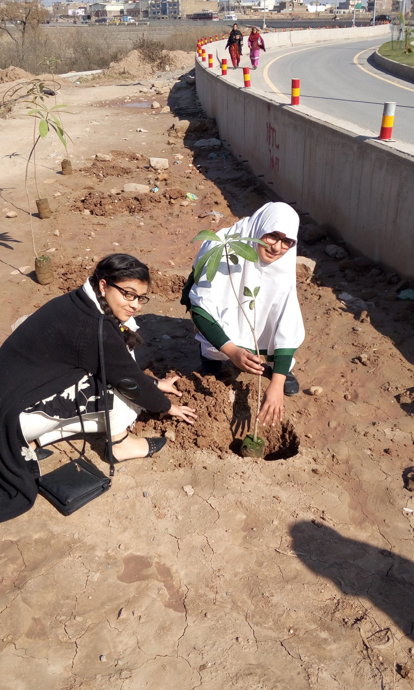 Plantation by Areesha Aamir of Class 6