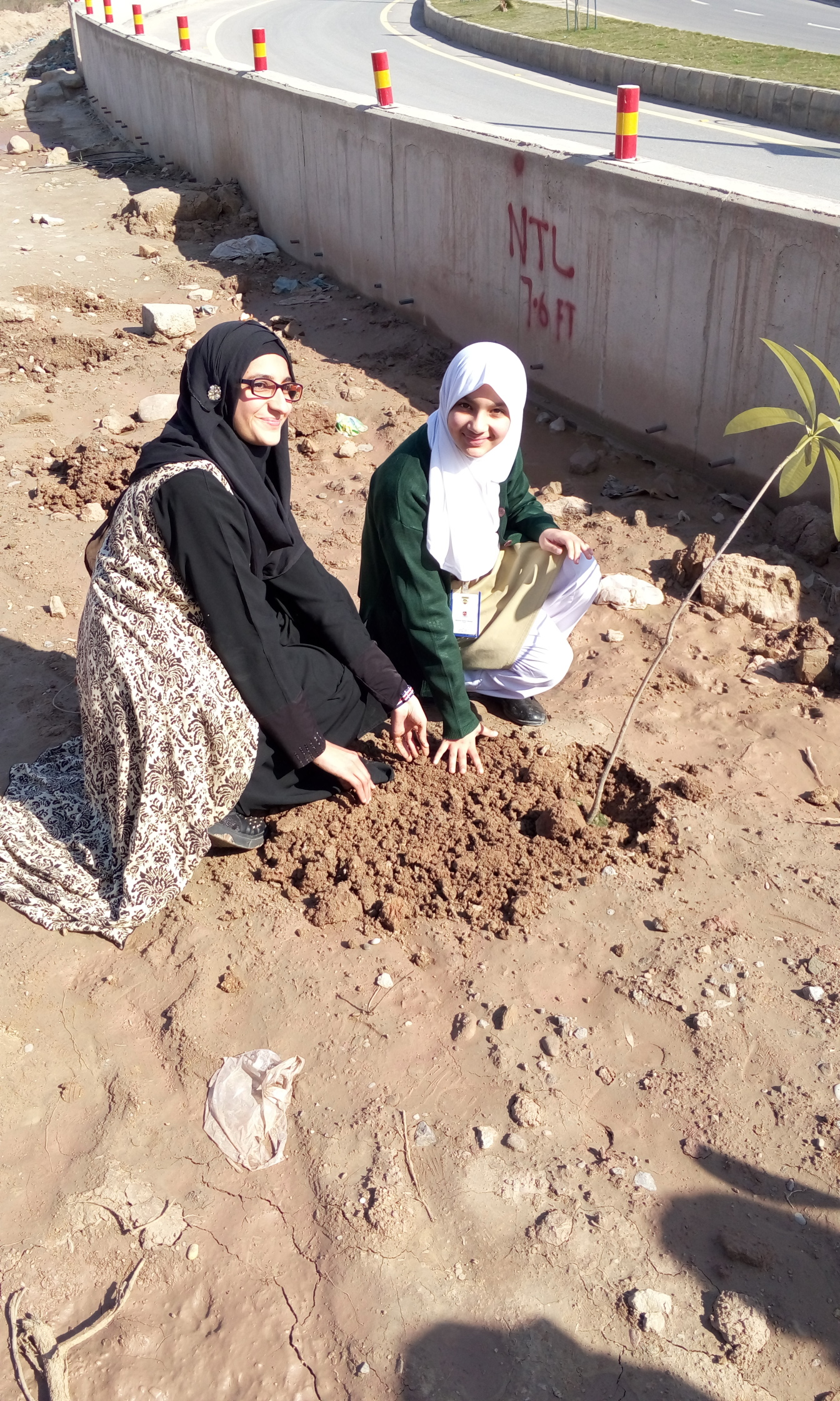 Plantation by Maleeha Yasmin Jahangir of Class 7