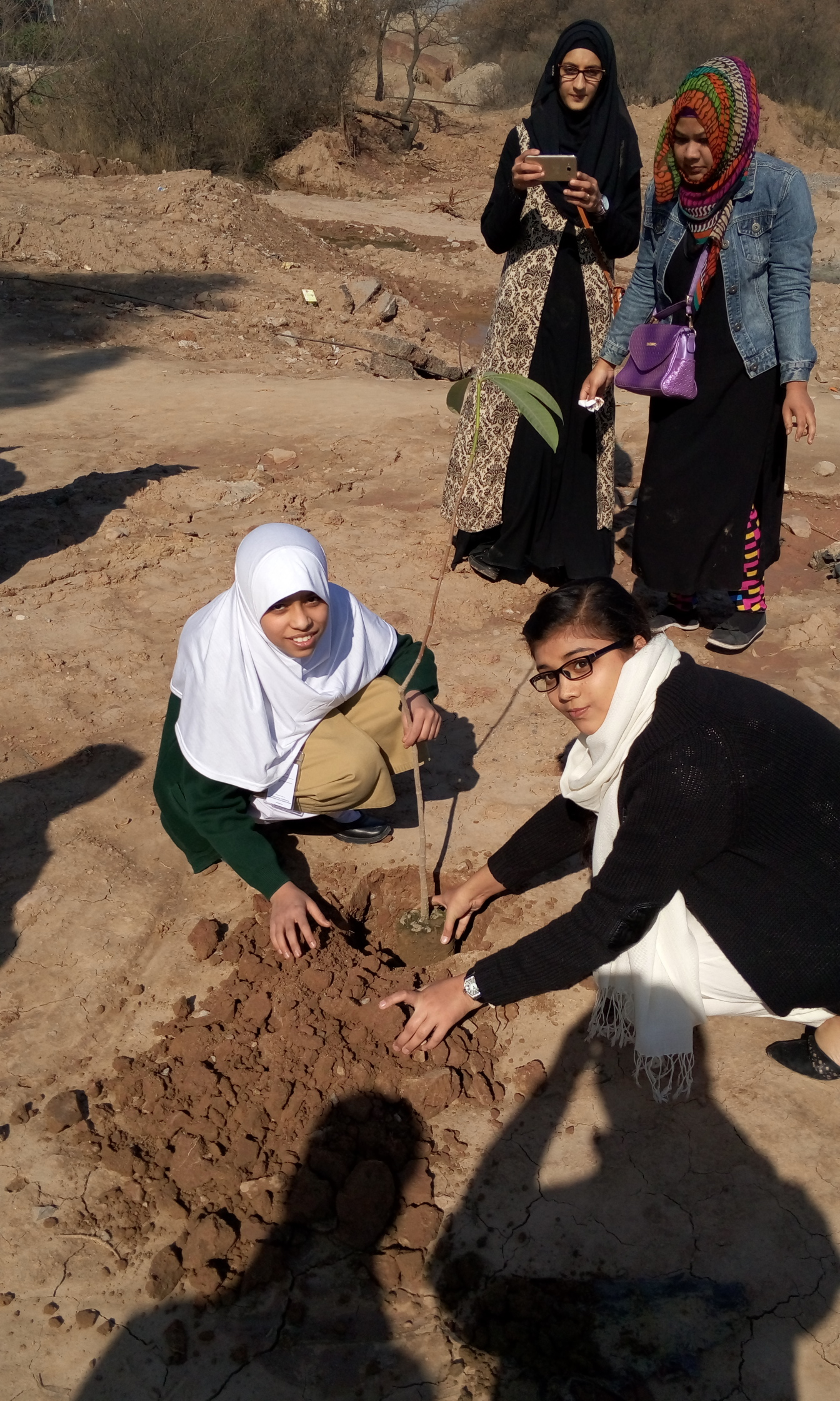 Plantation by Ifra Azeem of Class 6