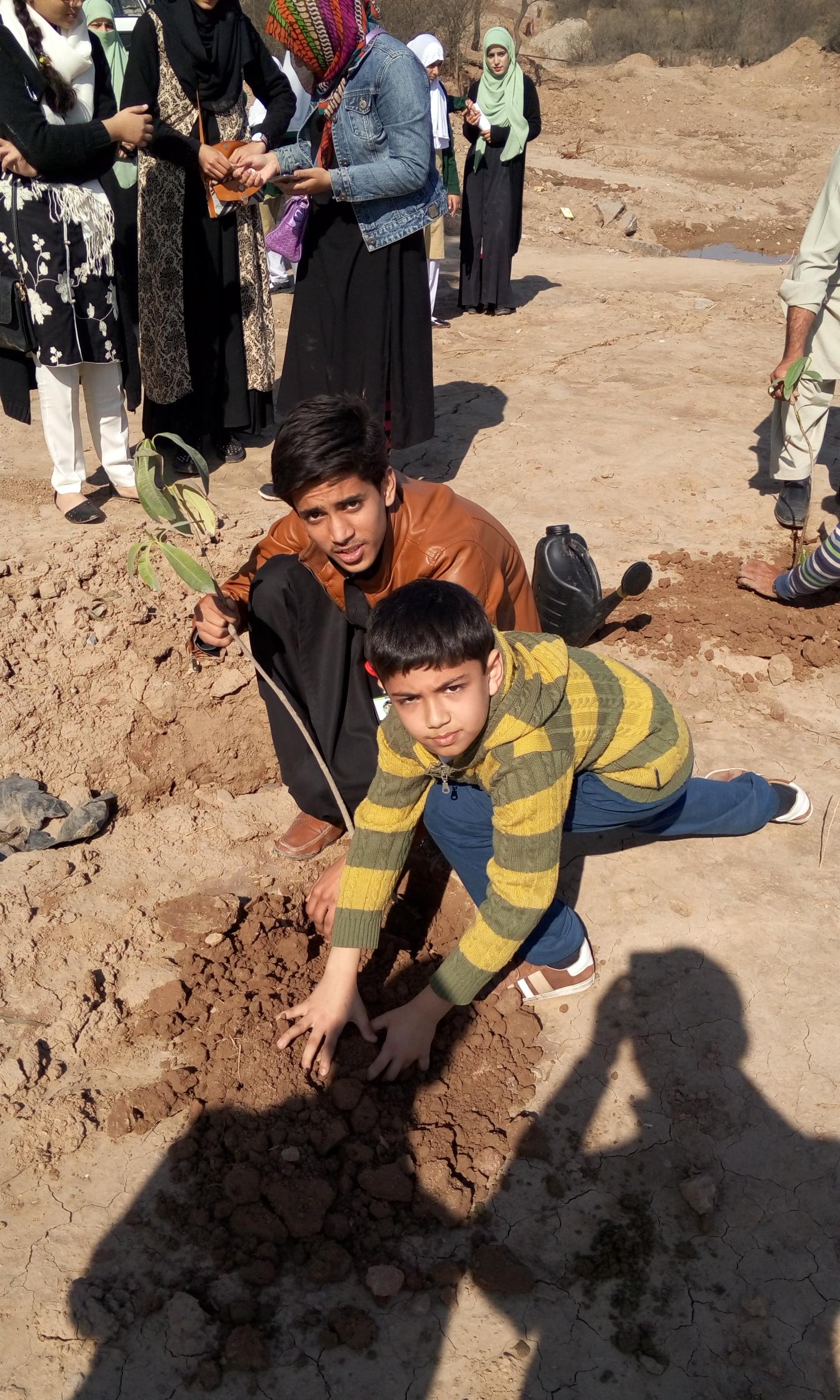Plantation by Daud Kamran of Class 3