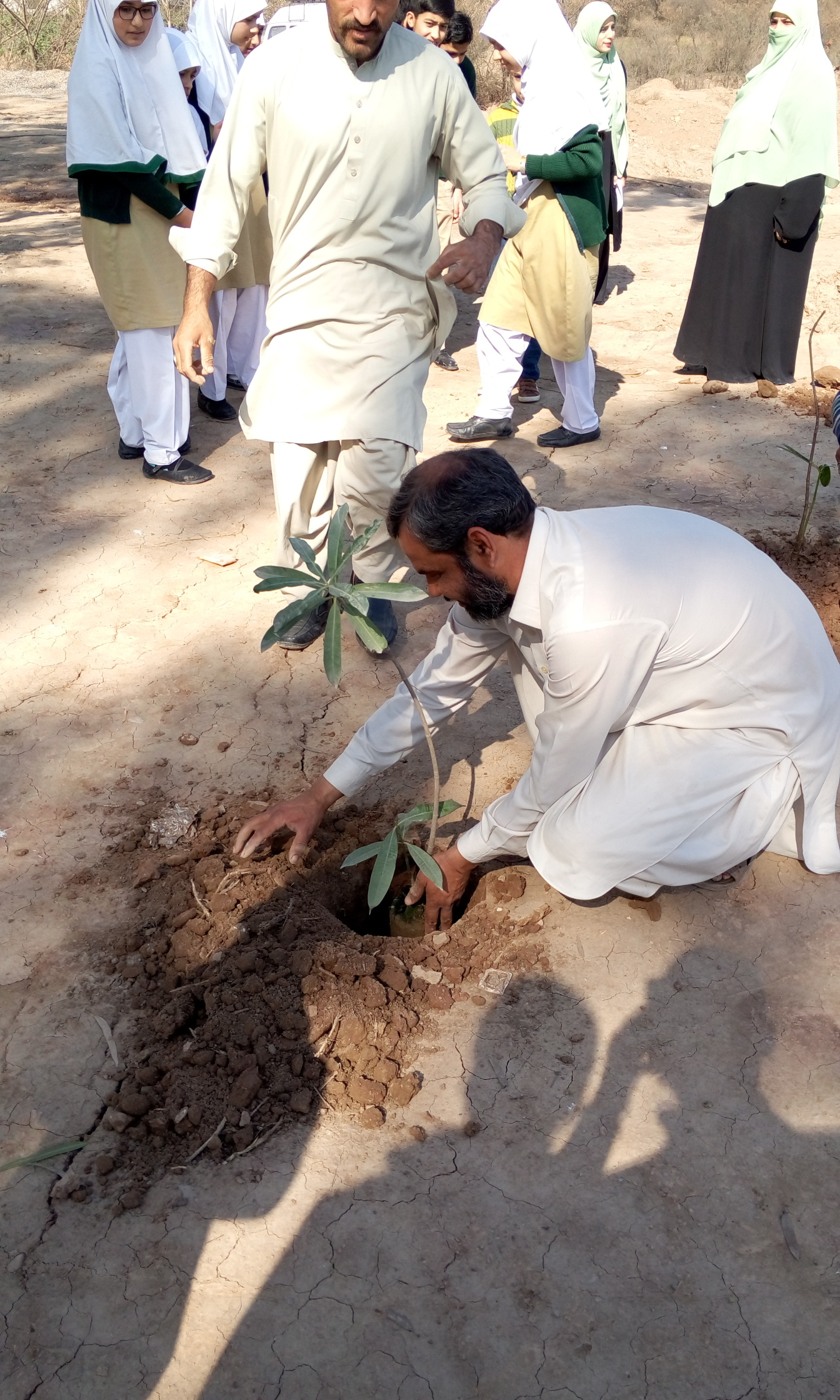 Plantation by Driver/Electrician Hayat-ur-Rehman